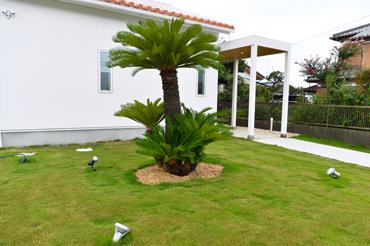 植栽イメージ写真1