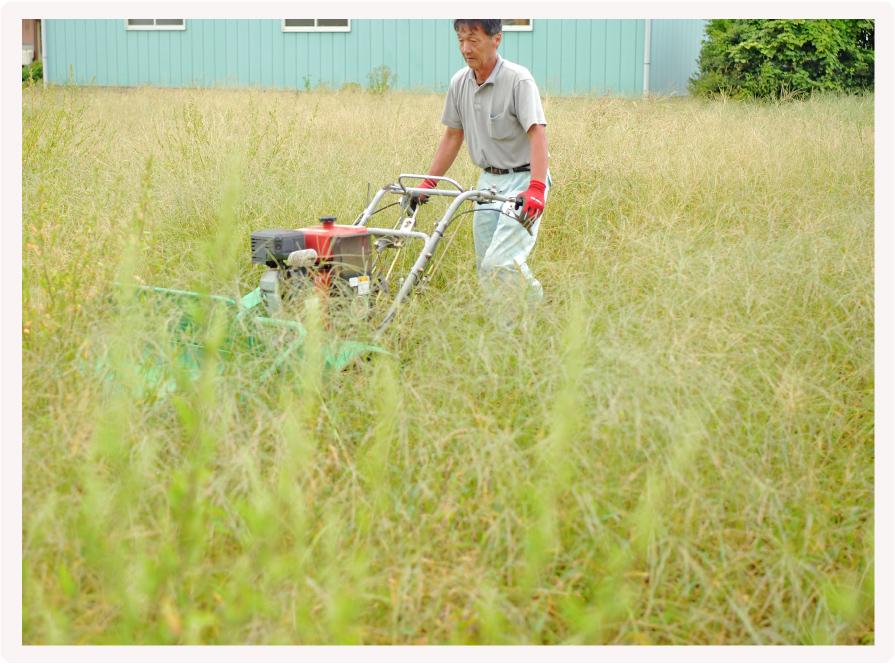 草刈り伐採・お庭の解体イメージ